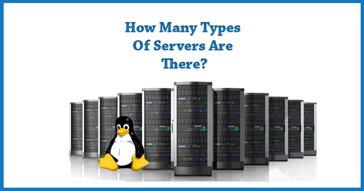 What Is A Server How Many Types Of Servers Are Out There