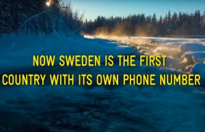 sweden phone number 46771793336