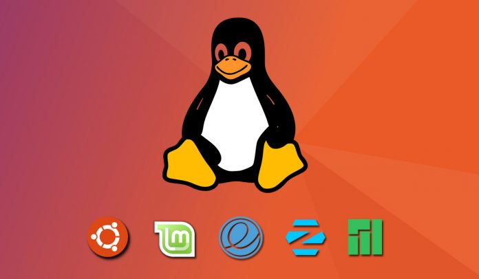 Top 5 Best linux distributions for newbie