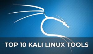 top 10 kali linux tools