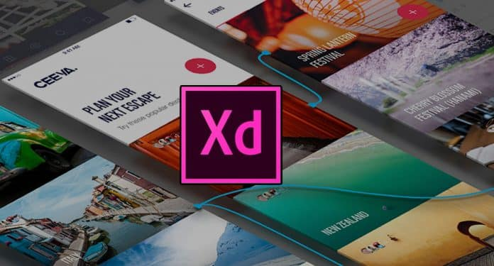 adobe XD availablle for free