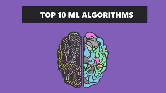 top 10 machine learning algorithms