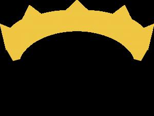 Logo nim