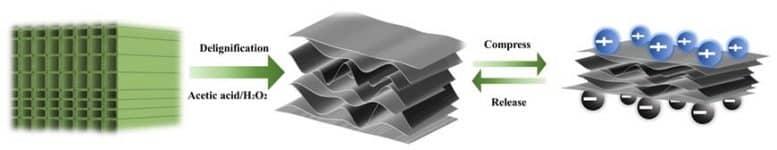 Piezoelectric-Nanogenerator.jpg