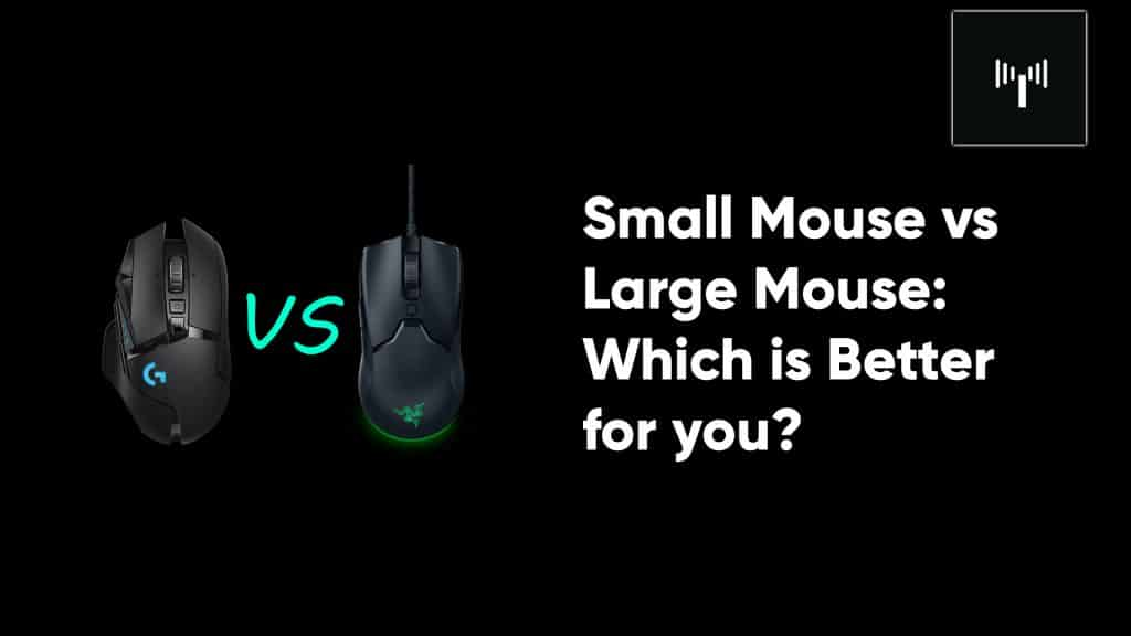 small mouse vs large.jpg