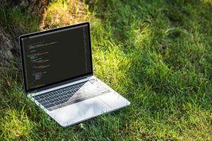 The Most Popular Programming Languages of 2021